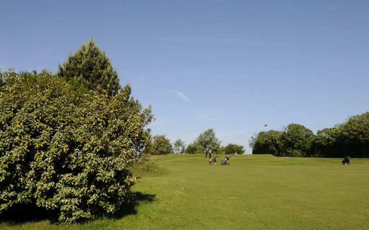 WBGC - 2ND HOLE - VIEW FROM FAIRWAY TO THE GREEN