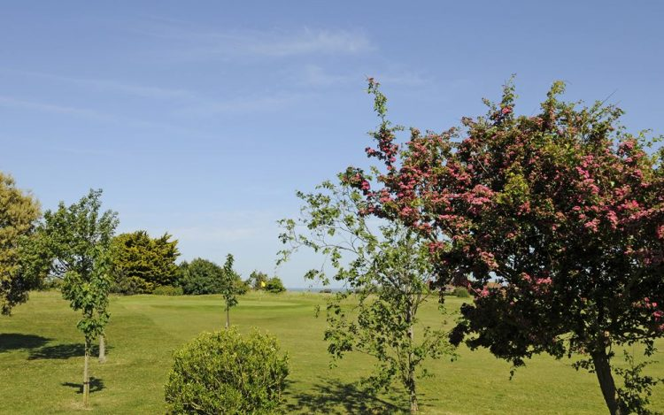 WBGC -3RD HOLE - VIEW WITH COLOURFUL TREE TO GREEN 2