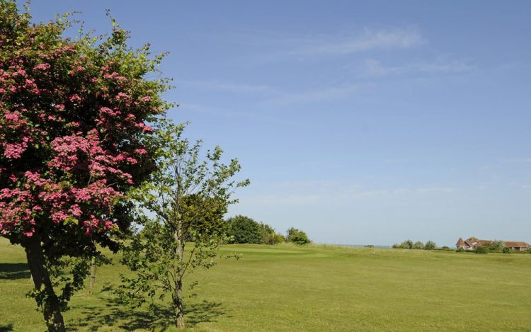 WBGC -3RD HOLE - VIEW WITH COLOURFUL TREE TO GREEN